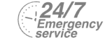 24/7 Emergency Service Pest Control in Bellingham, SE6. Call Now! 020 8166 9746